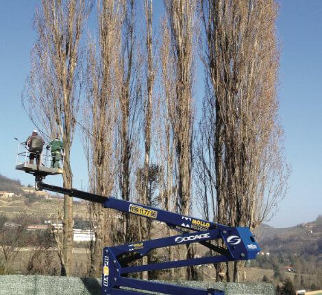 Riqualifica e manutenzione aree verdi